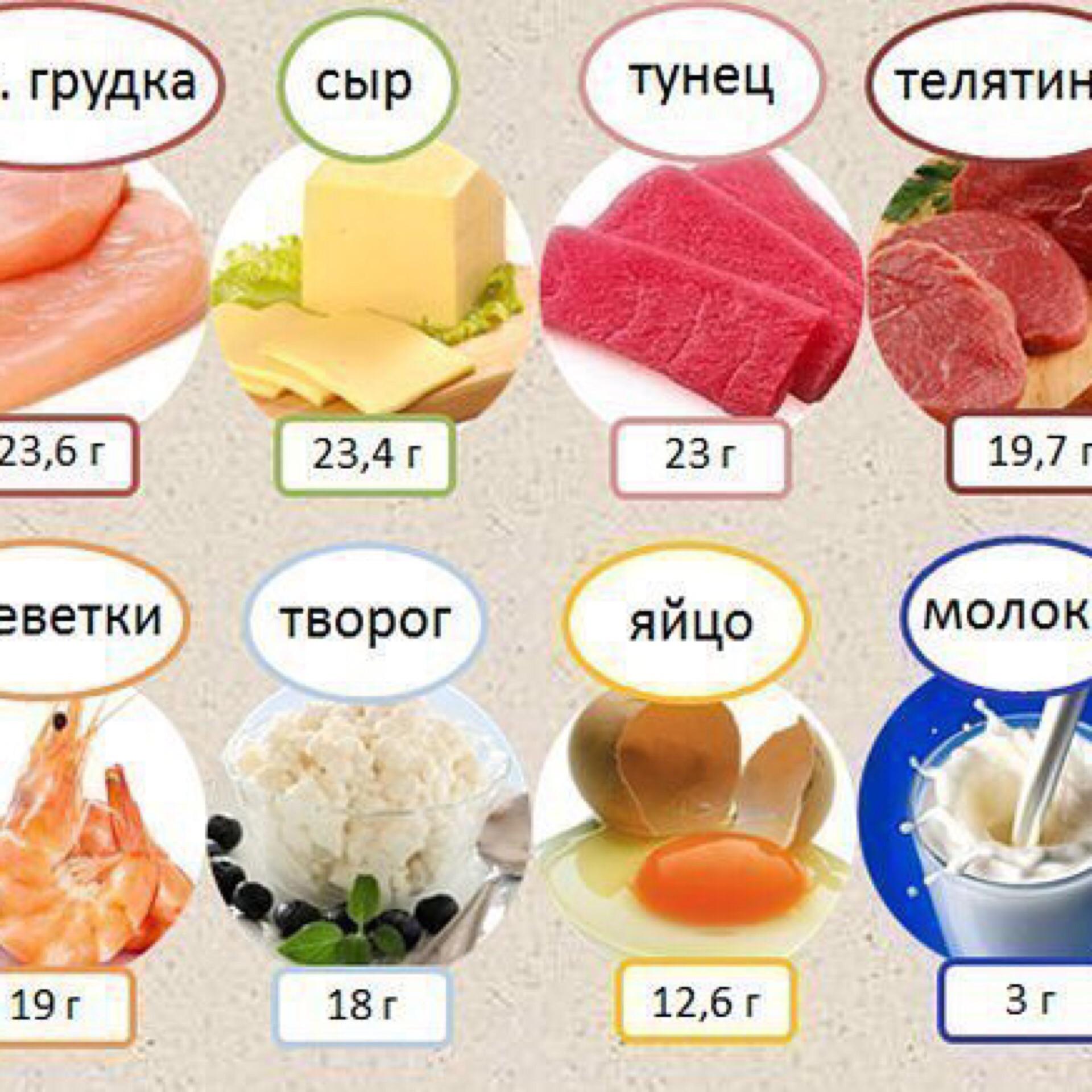 Какие Продукты Содержат Белок При Диете. Что можно есть на белковой диете: список продуктов, что можно есть, рацион, на сколько можно похудеть