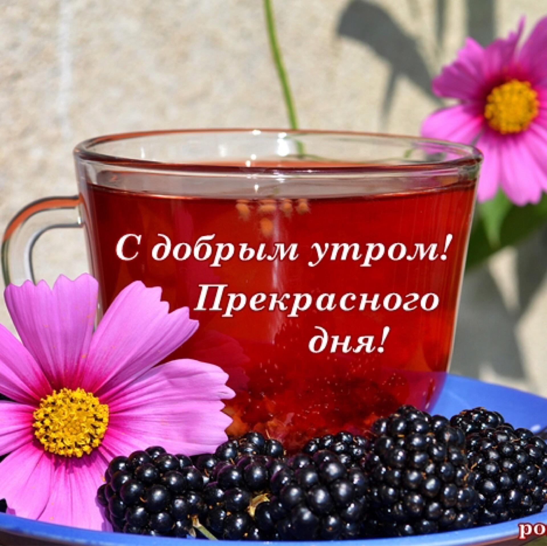 надел ленточки благотворного всем дня картинка севастопольский