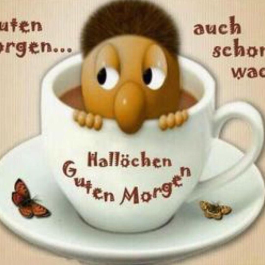 Днем, картинки доброе утро на немецком языке библейские